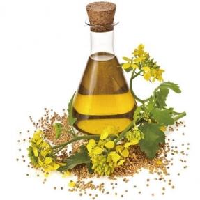 油脂:农产品板块最靓的仔