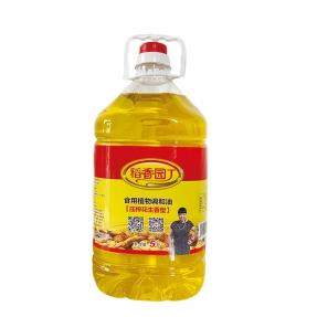 5L稻香园丁压榨花生食用调和油(方瓶4瓶装)